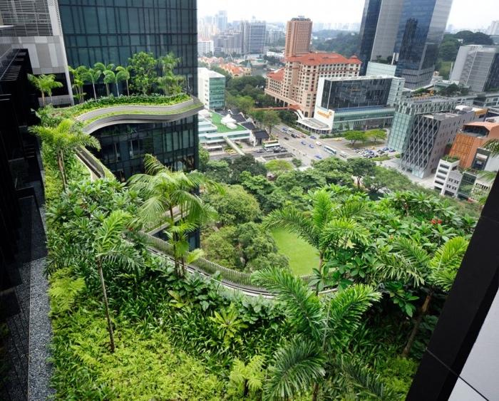 25560523 182644 สวนลอยฟ้า และรูปฟอร์มสวยงาม ที่ PARKROYAL Hotel สิงคโปร์