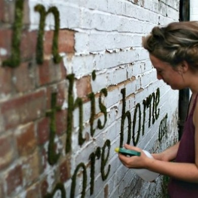 Moss graffiti ศิลปะตกแต่งกำแพงแบบใกล้ชิดธรรมชาติ 14 - Art & Design