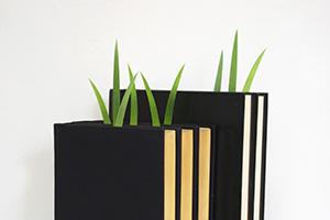 report02 Green marker ต้นหญ้ารักการอ่าน