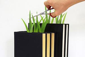 Green marker ต้นหญ้ารักการอ่าน 23 - grass