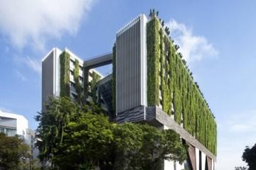 School of the Arts ในประเทศสิงคโปร์ เมื่อศิลปะรับใช้ชุมชน และชุมชนสร้างศิลปะ 13 - School of Art