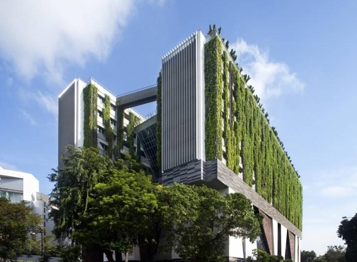 School of the Arts ในประเทศสิงคโปร์ เมื่อศิลปะรับใช้ชุมชน และชุมชนสร้างศิลปะ 15 - GREENERY