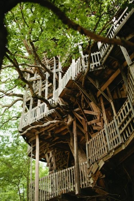 25560614 225523 บ้านต้นไม้จากไม้เก่า ใช้เวลาสร้างกว่า 11 ปี แบบไม่ต้องมีพิมพ์เขียว โดยพระที่เป็น Landscape Architect