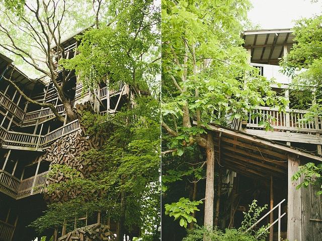 25560614 225558 บ้านต้นไม้จากไม้เก่า ใช้เวลาสร้างกว่า 11 ปี แบบไม่ต้องมีพิมพ์เขียว โดยพระที่เป็น Landscape Architect