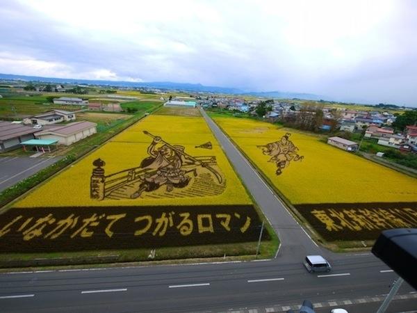 25560629 144722 ศิลปะบนแปลงนาข้าว ของญี่ปุ่น...เกินคำบรรยาย..