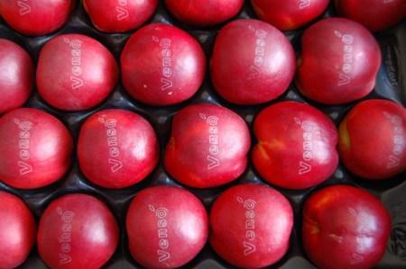 fruit-laser-labels-designboom03