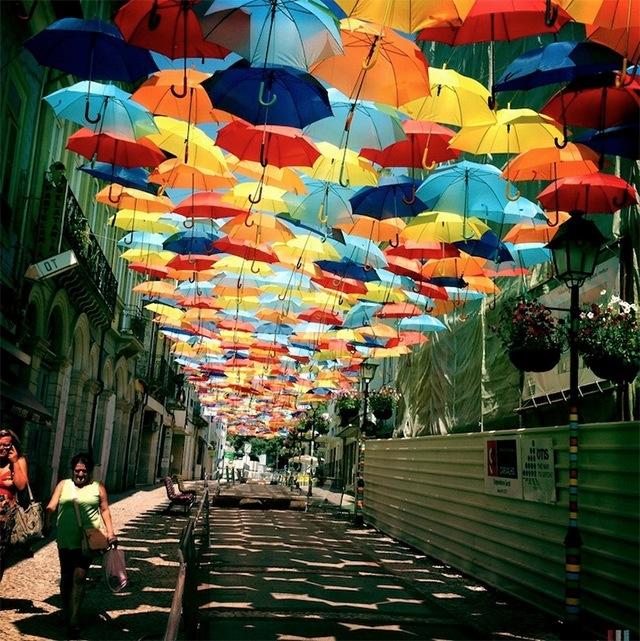 25560710 192216 ถนนที่คลุมด้วยร่มในโปรตุเกสกลับมาอีกครั้งในปีนี้ สีสันแตกต่างจากเดิม แต่ยังสวยสดใสเหมือนเดิม