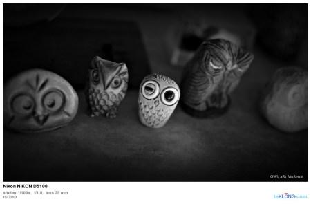156726DSC 0119 450x295 พิพิธภัณฑ์ศิลปะนกฮูก Owl Art Museum