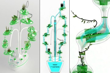 PlanTree – ระบบปลูกผักแนวตั้งด้วยน้ำ สำหรับคนเมือง