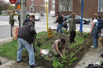 Guerrilla Gardener กองโจรสีเขียว 2 - Guerrilla Gardening