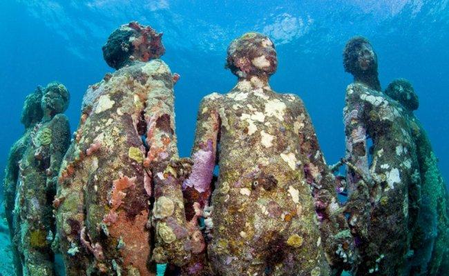 2 sculpture modern art jason decaires taylor sculpture 650x400 The Museo Subacuatico de Arte Project  พิพิธภัณฑ์ใต้น้ำ ดำน้ำชมประติมากรรม
