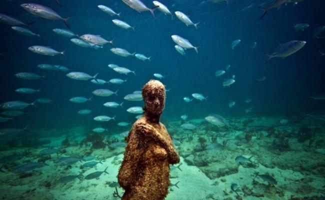 28 sculpture modern art jason decaires taylor sculpture 650x400 The Museo Subacuatico de Arte Project  พิพิธภัณฑ์ใต้น้ำ ดำน้ำชมประติมากรรม