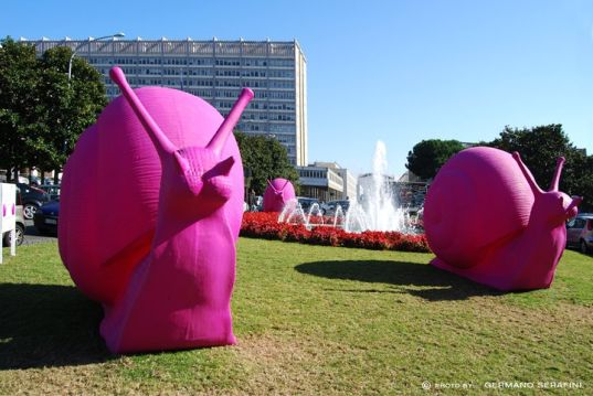 Pink Snails in Rome GIANT RECLECLED SNAILS หอยทากพิทักษ์สิ่งแวดล้อม