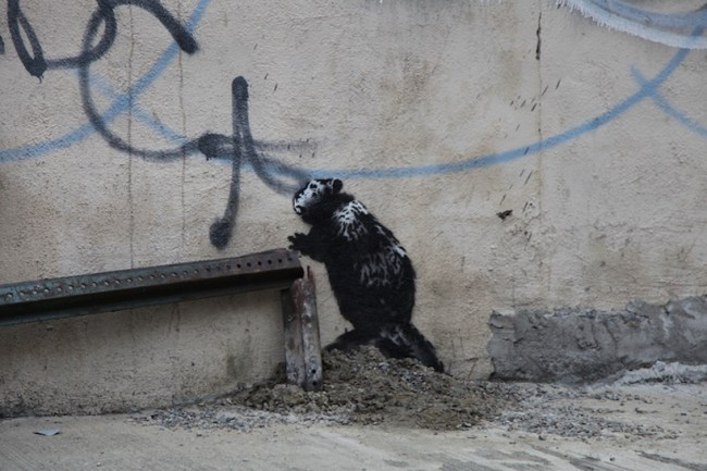 banksy NYC db04 750x500 งานศิลปะ Street Art BETTER OUT THAN IN โดย Banksy