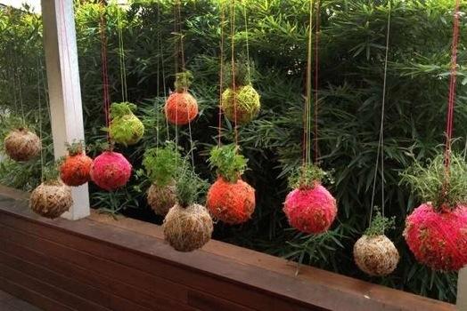 25570108 233821 DIY string garden..สวนแขวน จากกระถางเชือก และไหมพรม