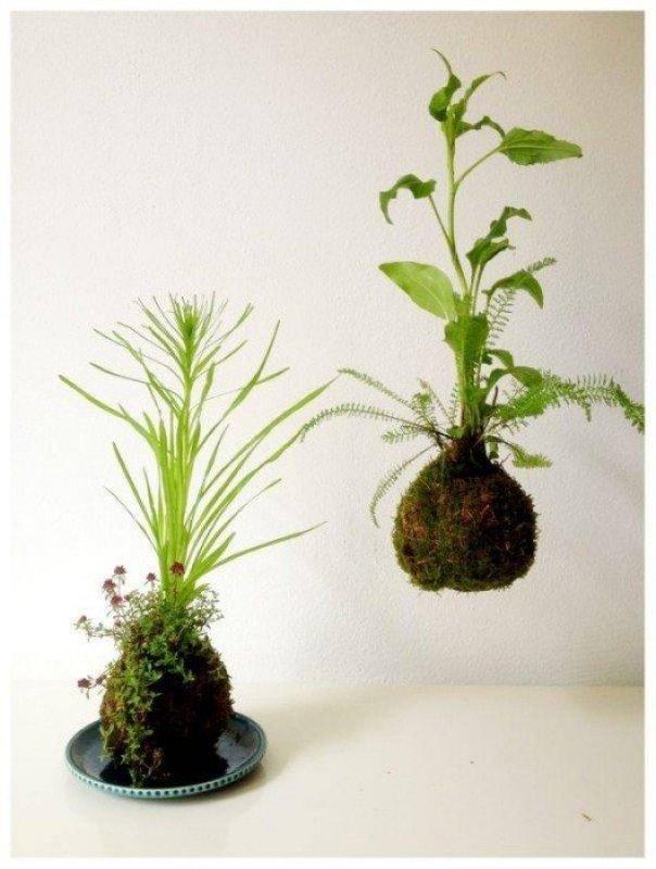 image3 DIY string garden..สวนแขวน จากกระถางเชือก และไหมพรม