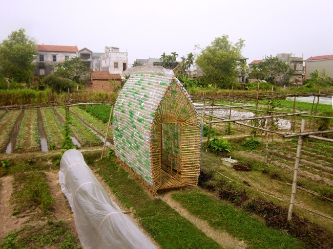 โรงอนุบาลผัก ทำจากไม้ไผ่ และขวดพลาสติก ความร่วมมือระหว่างคนในเมือง และเกษตกรในชนบท 13 - sustainable