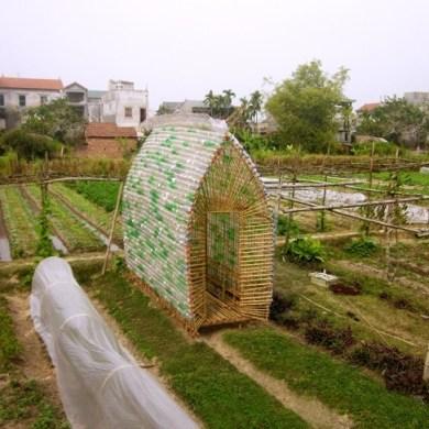 โรงอนุบาลผัก ทำจากไม้ไผ่ และขวดพลาสติก ความร่วมมือระหว่างคนในเมือง และเกษตกรในชนบท 16 - sustainable