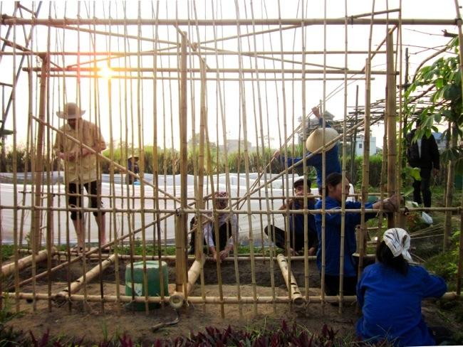 25570312 172631 โรงอนุบาลผัก ทำจากไม้ไผ่ และขวดพลาสติก ความร่วมมือระหว่างคนในเมือง และเกษตกรในชนบท