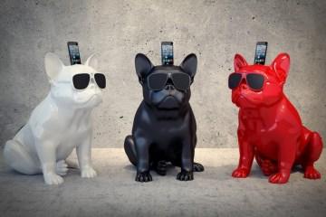 French Bulldog ร้องเพลงได้ !! 12 - iPhone