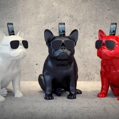 French Bulldog ร้องเพลงได้ !! 15 - iPhone
