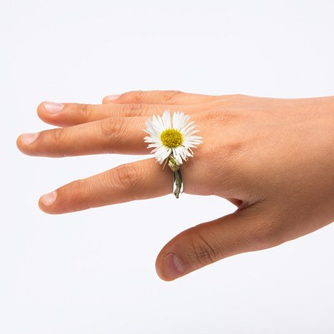 Spring-rings-by-Gahee-Kang-incorporate-flowers_dezeen_3