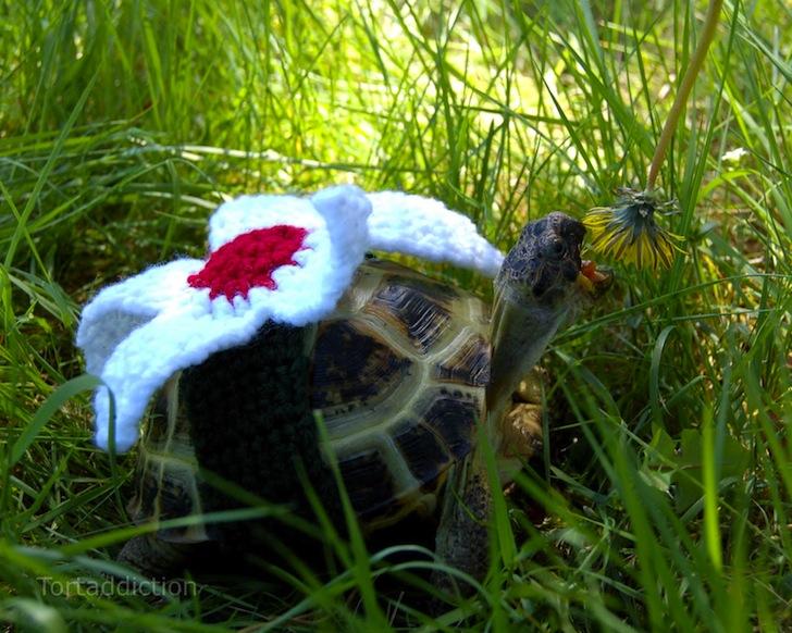 tortoise cozie white flower ถ้กเสื้อไหมพรมให้เต่าน้อย