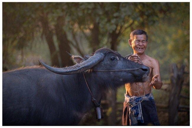 20140505 144831 ภาพความสุขในวิถีชีวิตแบบไทยๆโดย Sangkhom Hungkhunthod