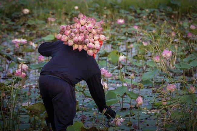 20140505 145901 ภาพความสุขในวิถีชีวิตแบบไทยๆโดย Sangkhom Hungkhunthod