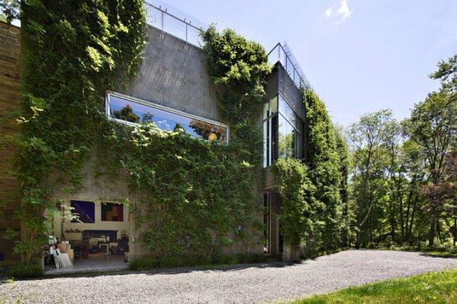 20140505 210356 บ้าน และแกลลอรี่ศิลปะ ที่ห่มคลุมด้วยชีวิตสีเขียวที่งดงาม