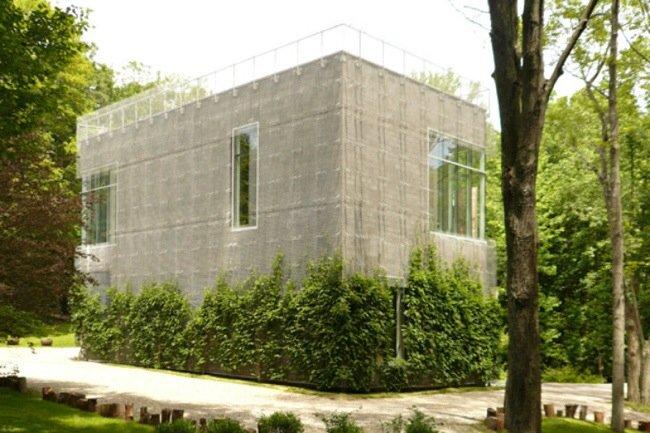 20140505 210605 บ้าน และแกลลอรี่ศิลปะ ที่ห่มคลุมด้วยชีวิตสีเขียวที่งดงาม