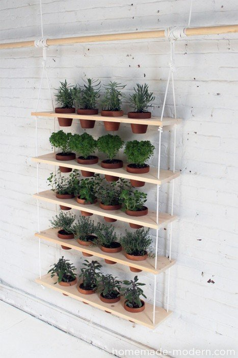 20140510 121647 DIY สวนผักแนวตั้งจากไม้ กระถาง และเชือก