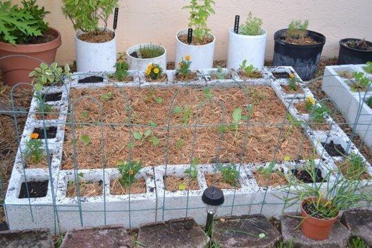 20140517 211029 9 วิธีใช้คอนกรีตบล็อกกับสวนหลังบ้านให้ดูดี มีสไตล์