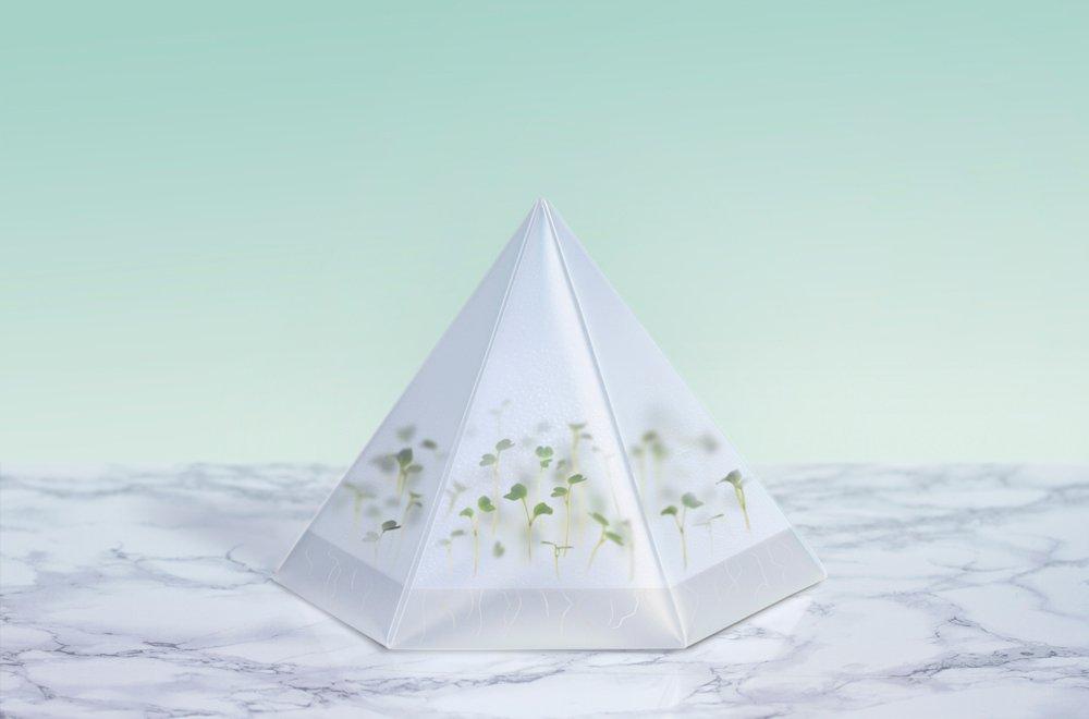 tomorrow-machine-microgarden-1
