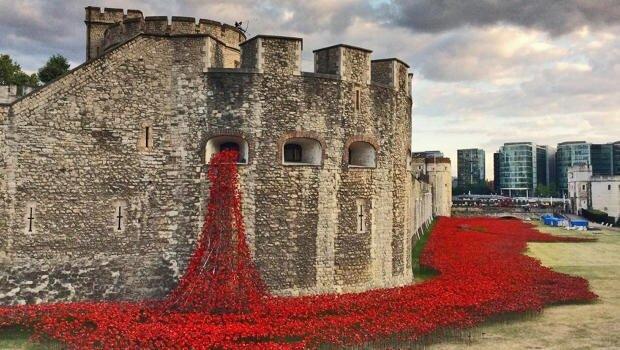 20140804 211502 76502424 Installation Art ..ดอกป๊อปปี้ไหลนองเพื่อรำลึกถึงผู้เสียชีวิตในสงครามโลกครั้งที่1