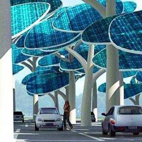 ป่าผลิตพลังงานแสงอาทิตย์ ..และที่จอดรถ 17 - ที่จอดรถ
