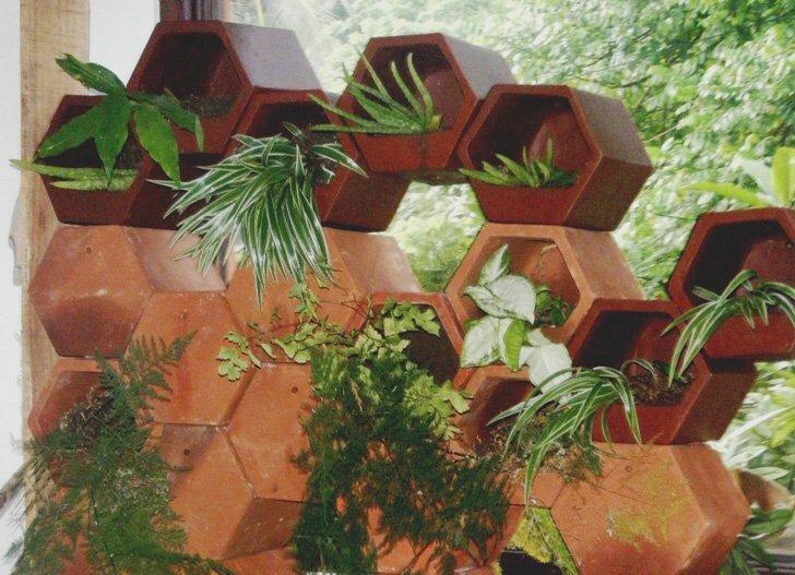 IMG 4340 สวนแนวตั้ง..Green Wall จากกระถางดินเผา