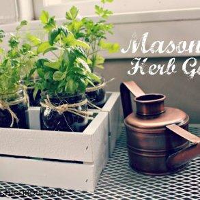 กระถางต้นไม้จาก Mason Jar