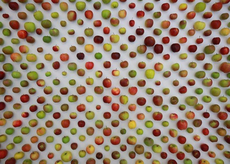 IMG 7744 นี่สิต้นตำรับแอปเปิ้ลแท้ๆ..The Real Apple Store