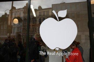 นี่สิต้นตำรับแอปเปิ้ลแท้ๆ..The Real Apple Store 10 - apple