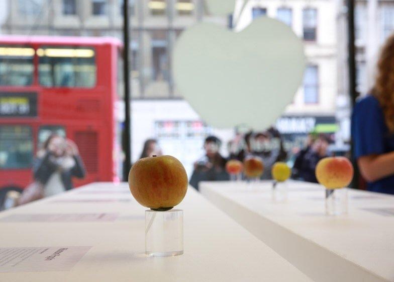 IMG 7751 นี่สิต้นตำรับแอปเปิ้ลแท้ๆ..The Real Apple Store