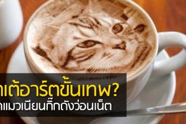 Latte Art ภาพแมวบนฟองนม.. ฝีมือขั้นเทพ! ... แต่แหม ใครสังเกตดีๆ มาจับผิดกัน 21 - แมว