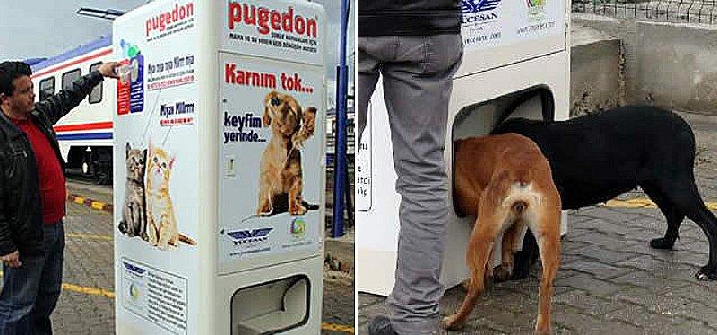 pugedon feed machine Recycle to Reborn ตู้เปลี่ยนขวดน้ำรีไซเคิลเป็นอาหารน้องหมาจรจัด