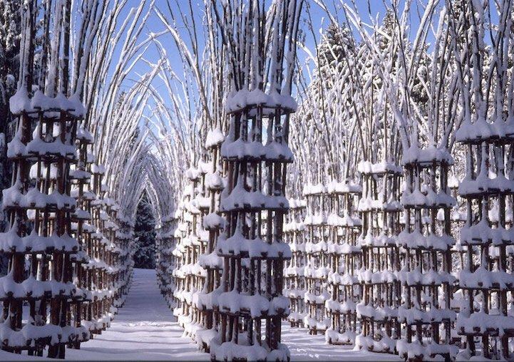 IMG 8426 โบสถ์ต้นไม้..ตัวอย่างงานnatural architectureที่น่าประทับใจที่สุดในโลกชิ้นหนึ่ง