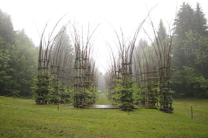 IMG 8427 โบสถ์ต้นไม้..ตัวอย่างงานnatural architectureที่น่าประทับใจที่สุดในโลกชิ้นหนึ่ง