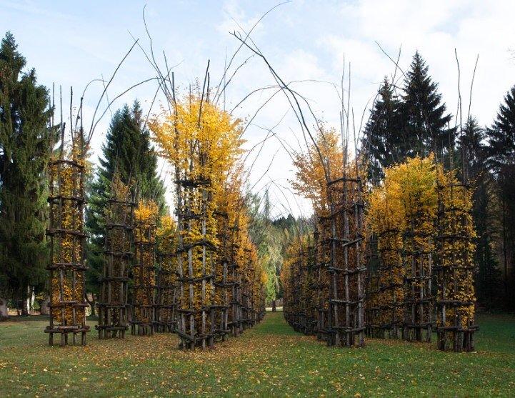 IMG 8436 โบสถ์ต้นไม้..ตัวอย่างงานnatural architectureที่น่าประทับใจที่สุดในโลกชิ้นหนึ่ง
