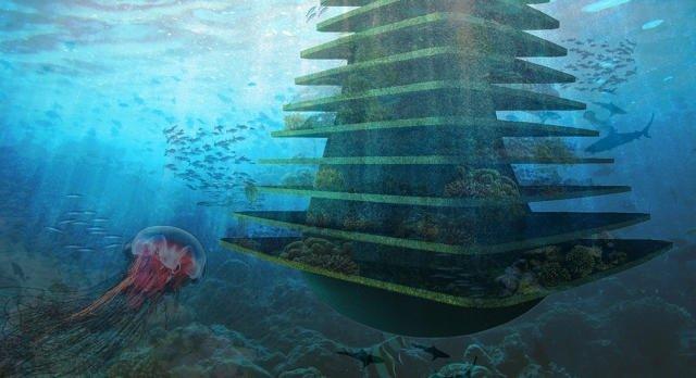 IMG 8580 Sea Trees ..ป่าลอยน้ำ ที่พักพิงสำหรับสิ่งมีชีวิตในธรรมชาติ ในเขตเมืองหนาแน่น