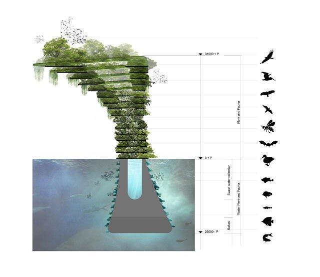 IMG 8581 Sea Trees ..ป่าลอยน้ำ ที่พักพิงสำหรับสิ่งมีชีวิตในธรรมชาติ ในเขตเมืองหนาแน่น