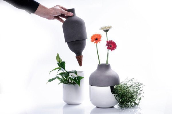 IMG 8950 เมื่อกระถางประหยัดน้ำ อยู่ร่วมกับแจกันดอกไม้ เกื้อกูลกันและกัน ..อย่างงดงาม