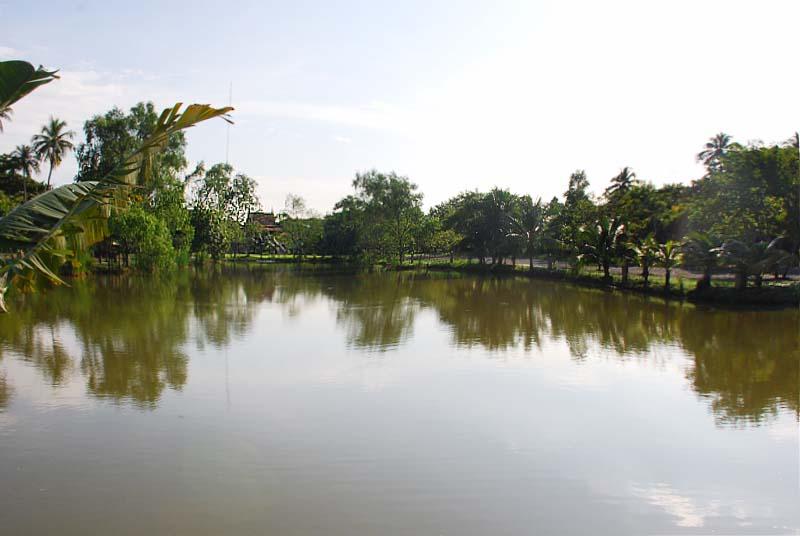 """fishlake พิพิธภัณฑ์ปลากัดไทย ตั้งอยู่ในพื้นที่ """"เกาะกระเพาะหมู"""""""